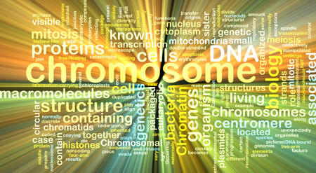 chromosomal: Background text pattern concept wordcloud illustration of  chromosome glowing light