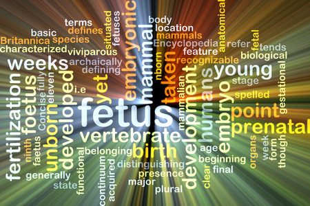 embryonic: Background concept wordcloud illustration of fetus glowing light