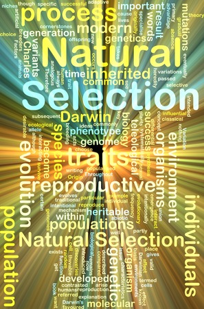 natural selection: Background text pattern concept wordcloud illustration of natural selection glowing light