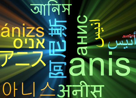 anis: Background concept wordcloud multilanguage international many language illustration of anis glowing light
