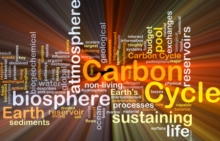 biosphere: Background concept wordcloud illustration of carbon cycle glowing light