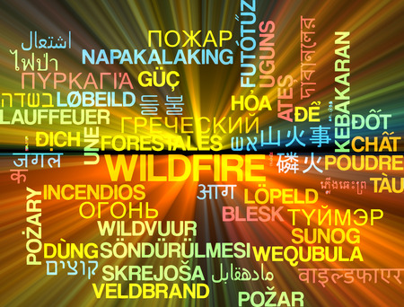 wildfire: Background concept wordcloud multilanguage international many language illustration of wildfire glowing light