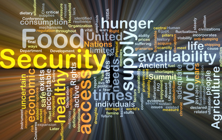 unavailability: Background concept wordcloud illustration of food security glowing light