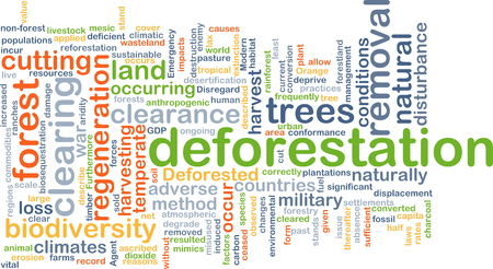 adverse: Background concept wordcloud illustration of deforestation Stock Photo