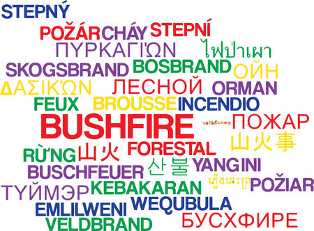 multilanguage: Background concept wordcloud multilanguage illustration of bushfire Stock Photo