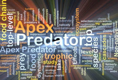 chain food: Background concept wordcloud illustration of apex predator