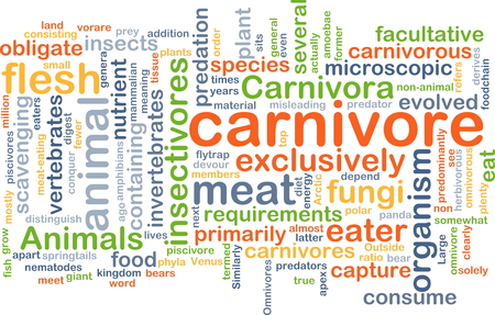 Background concept wordcloud illustration of carnivore Stock Photo