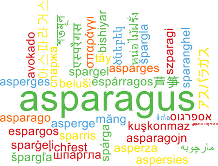 asparagus: Background concept wordcloud multilanguage illustration of asparagus