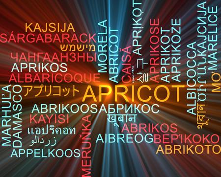 japanese apricot: Background concept wordcloud multilanguage international many language illustration of apricot