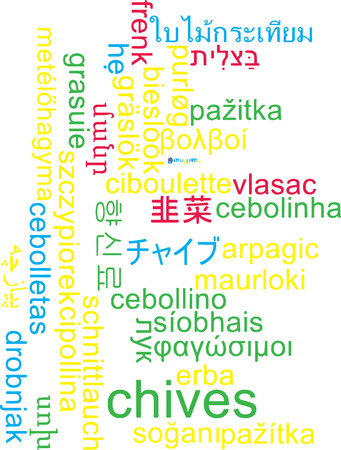 chives: Background concept wordcloud multilanguage illustration of chives