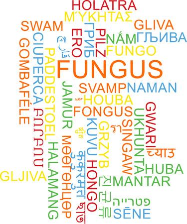 fungus: Background concept wordcloud multilanguage international many language illustration of fungus