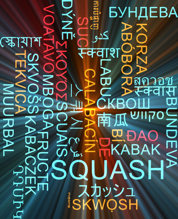 squash: Background concept wordcloud multilanguage illustration of squash Stock Photo
