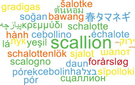scallion: Background concept wordcloud multilanguage illustration of scallion Stock Photo