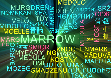 marrow: Background concept wordcloud multilanguage illustration of marrow  Stock Photo