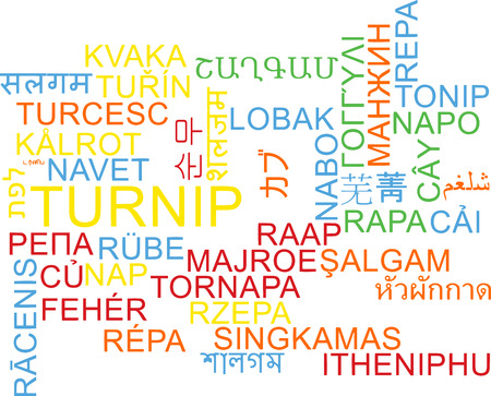 turnip: Background concept wordcloud multilanguage illustration of turnip