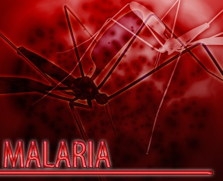carried: Abstract background digital collage concept illustration malaria mosquito disease