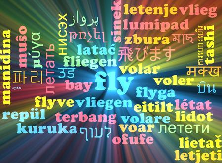 multilanguage: Background concept wordcloud multilanguage illustration of fly