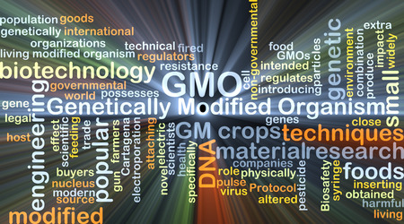 gm: Background concept wordcloud illustration of genetically modified organism GMO glowing light