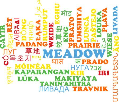 grasslands: Background concept wordcloud multilanguage international many language illustration of meadow
