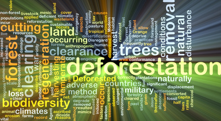 adverse: Background concept wordcloud illustration of deforestation glowing light