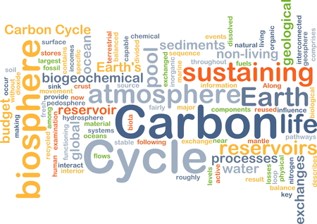dissolved: Background concept wordcloud illustration of carbon cycle