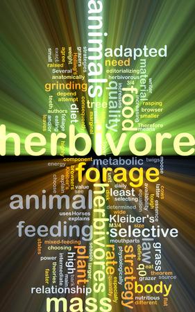 herbivore: Background concept wordcloud illustration of herbivore glowing light Stock Photo
