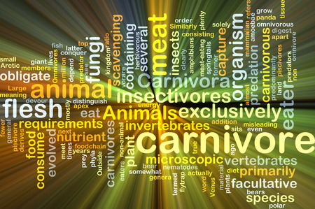 Background concept wordcloud illustration of carnivore glowing light Stock Photo