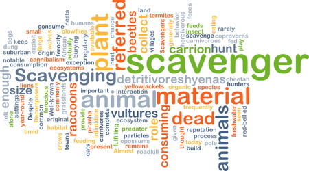 Background concept wordcloud illustration of scavenger Stock Photo
