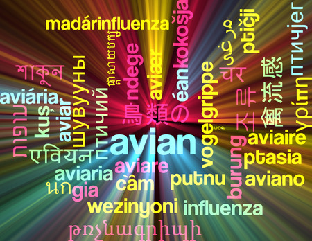 avian: Background concept wordcloud multilanguage international many language illustration of avian glowing light Stock Photo