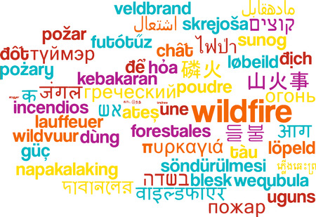 wildfire: Background concept wordcloud multilanguage international many language illustration of wildfire