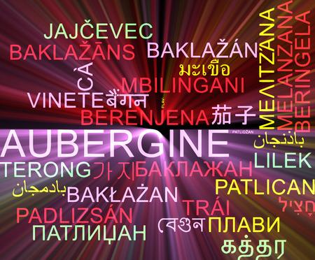 aubergine: Background concept wordcloud multilanguage international many language illustration of aubergine glowing light