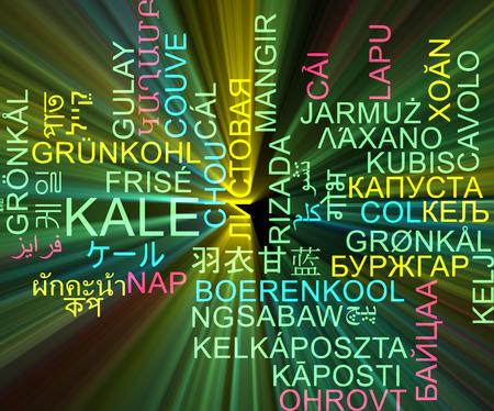 kale: Background concept wordcloud multilanguage international many language illustration of kale glowing light