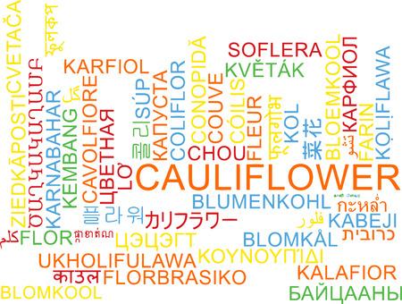 cauliflower: Background concept wordcloud multilanguage international many language illustration of cauliflower