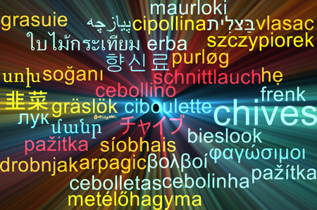 chives: Background concept wordcloud multilanguage international many language illustration of chives glowing light