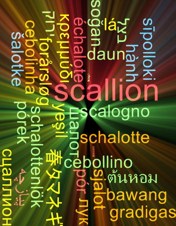 scallion: Background concept wordcloud multilanguage international many language illustration of scallion glowing light