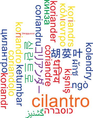 multilanguage: Background concept wordcloud multilanguage international many language illustration of cilantro