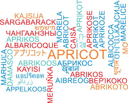 apricot: Background concept wordcloud multilanguage international many language illustration of apricot