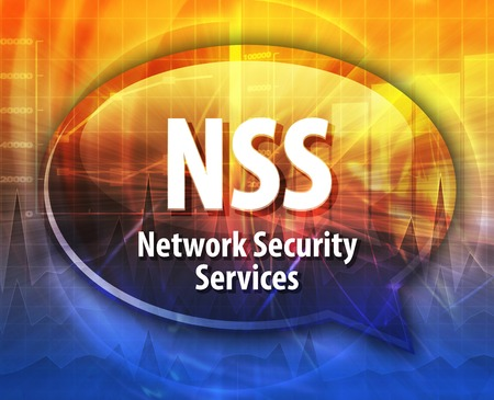 security technology: Speech bubble illustration of information technology acronym abbreviation term definition NSS Network Security Services