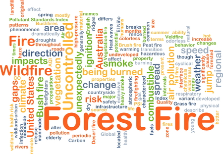 wildfire: Background concept wordcloud illustration of forest fire