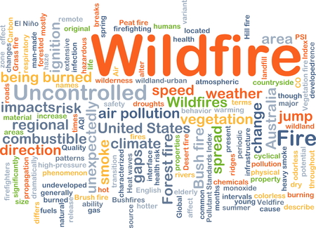 wildfire: Background concept wordcloud illustration of wildfire