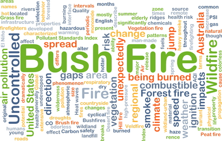 bush fire: Background concept wordcloud illustration of bush fire Stock Photo