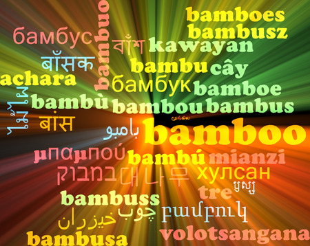 neon plant: Background concept wordcloud multilanguage international many language illustration of bamboo glowing light Stock Photo