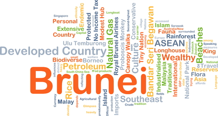 developed: Background concept wordcloud illustration of Brunei