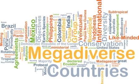 wordcloud: Background concept wordcloud illustration of megadiverse countries Stock Photo