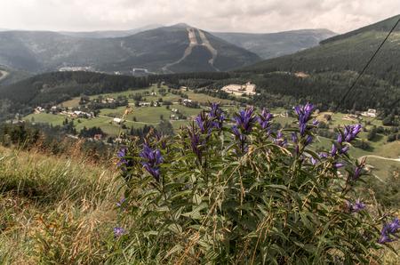 krkonose: Spindleruv mlyn in Krkonose mountains (Czech Republic) from Sv. Peter skyareal.