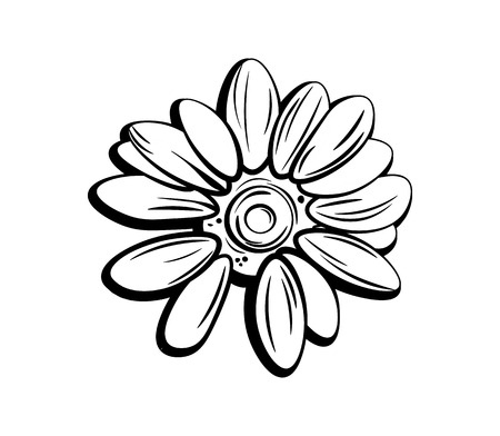 mother s day: beautiful monochrome, black and white daisy flower isolated. for greeting cards and invitations of the wedding, birthday, Valentine s Day, mother s day