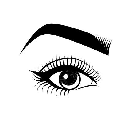 eyebrow makeup: Female Eyes and Eyebrow. Makeup. The Beauty Industry. Vector Illustration