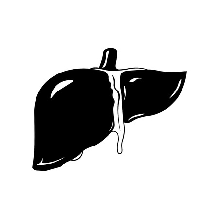 alimentary tract: Human liver icon in black style isolated on white background. vector illustration.