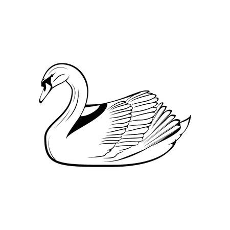 白鳥アイコンの背景に分離されました。ベクトル図  イラスト・ベクター素材
