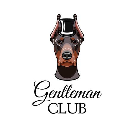 Doberman Pinscher dog with top hat. Vector illustrated portrait of dog on white background. Gentleman club.